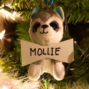 Mollie Beck
