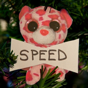 Speed Hayman
