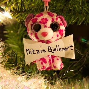 Mitzie Bjelknert
