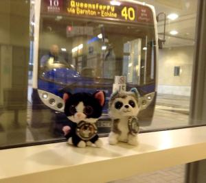 Catching a bus to Paris, France