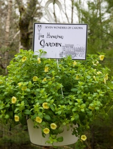 #1 - The Hanging Garden