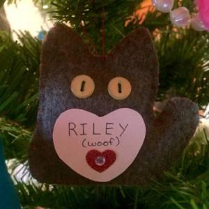 Riley Abramovitch (woof)