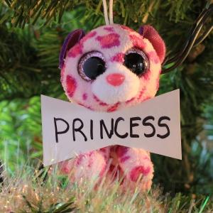 Princess Embrett