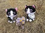 Spring flowers!!  Prairie crocus