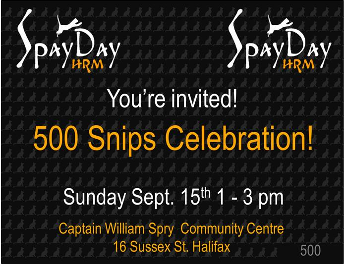 500 snips