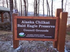 Minions at Chilkat Eagle Preserve, Haines, Alaska