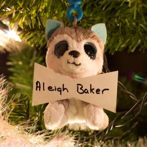 Aleigh Baker