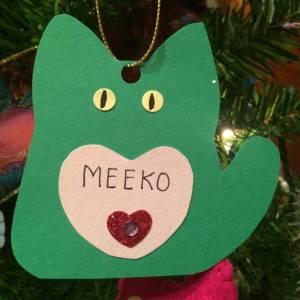 Meeko Curry
